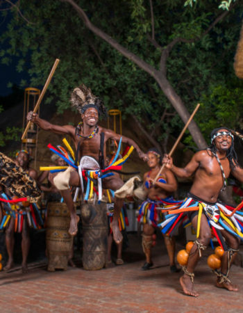 The Boma Dinner And Drum Show