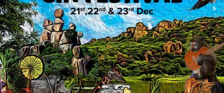 Bulawayo GIN Festival