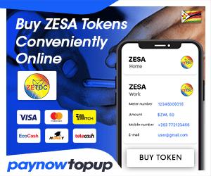 Buy ZESA online