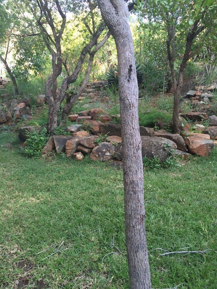 Garden of Eden Camp