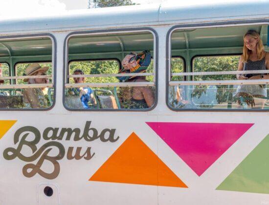 Bamba Bus